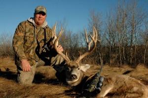 mule deer 8